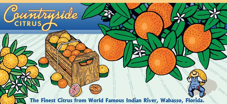 Countryside Citrus (Florida Oranges)