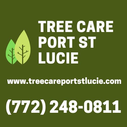Tree Care Port St Lucie