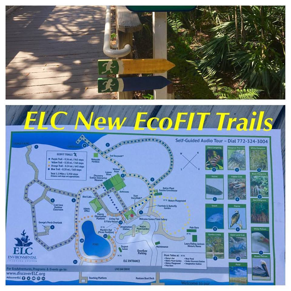 Eco Fit Trails At Elc