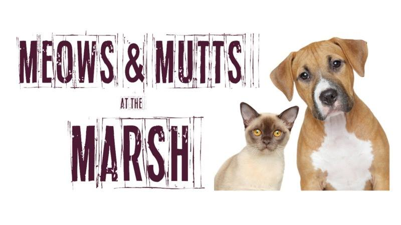 Meows & Mutts At The Marsh