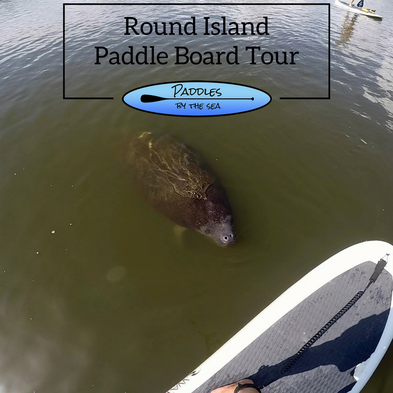 Paddle Board Tour Round Island