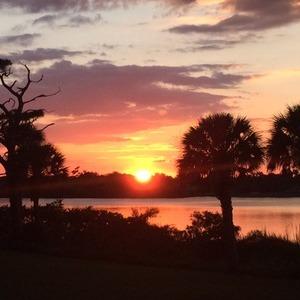 Roseland Sunset
