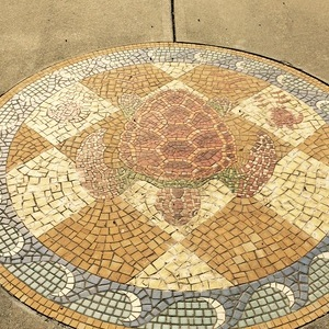 Turtle Mosiac
