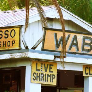 Wabasso Bait Shop